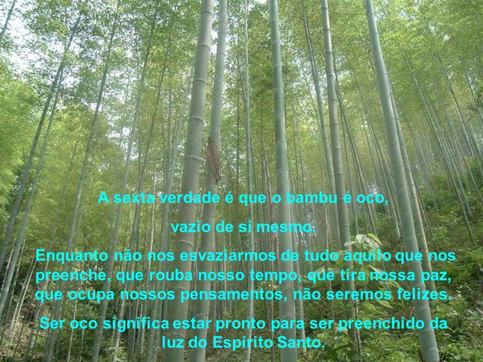 A sexta verdade é que o bambu é oco,