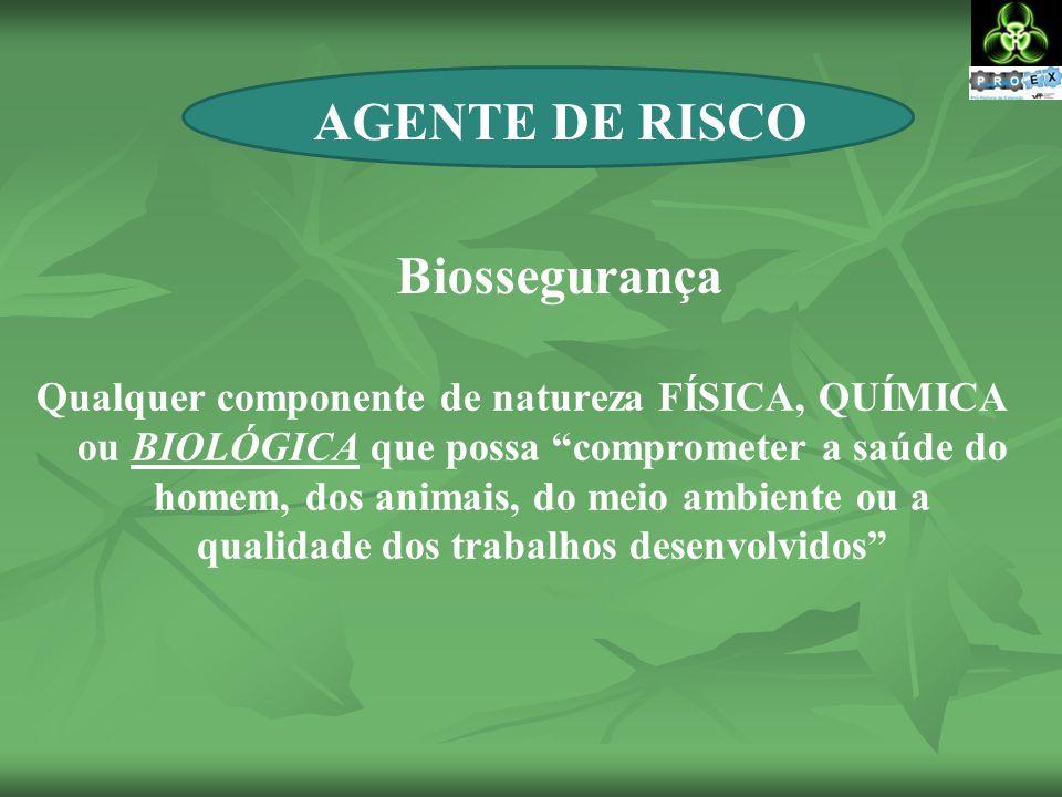 AGENTE DE RISCO Biossegurança