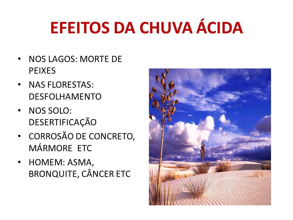 EFEITOS DA CHUVA ÁCIDA NOS LAGOS: MORTE DE PEIXES