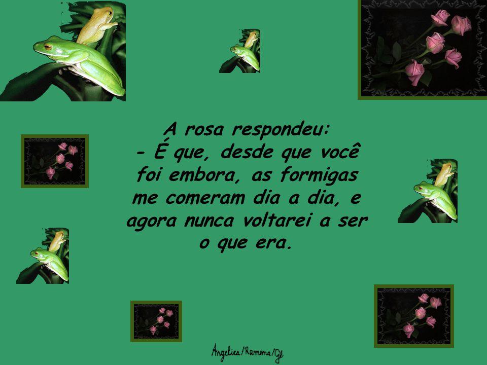 A rosa respondeu: - É que, desde que você foi embora, as formigas me comeram dia a dia, e agora nunca voltarei a ser o que era.