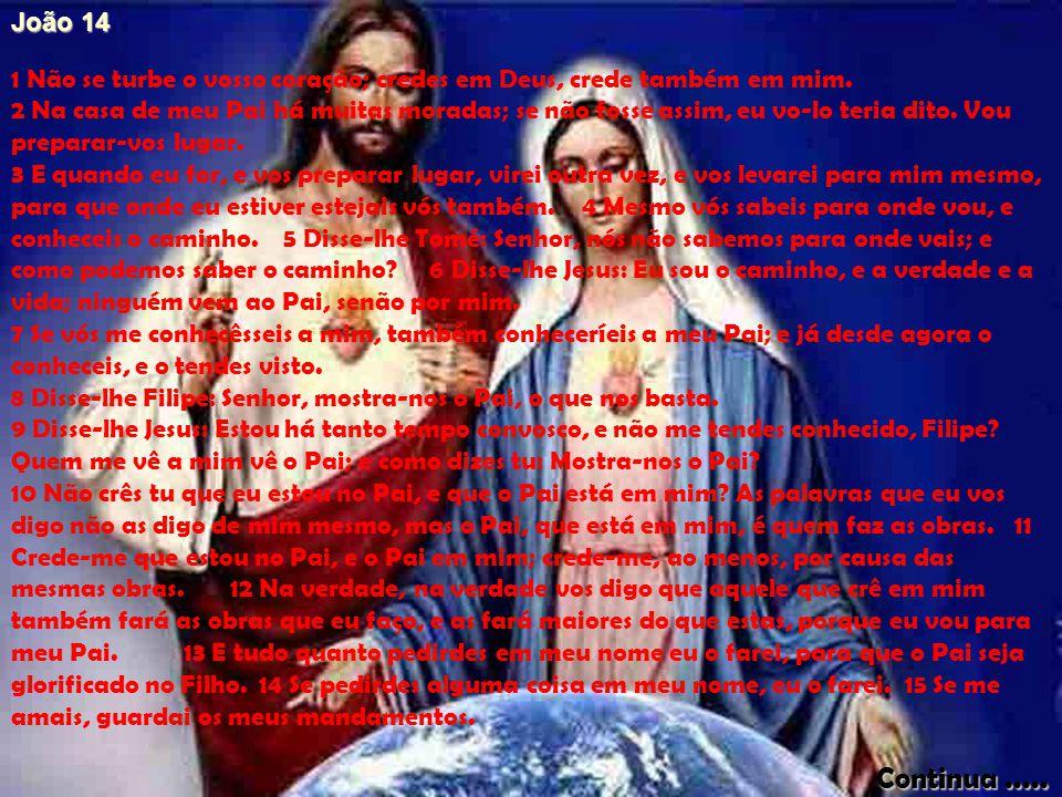 João 14 1 Não se turbe o vosso coração; credes em Deus, crede também em mim.