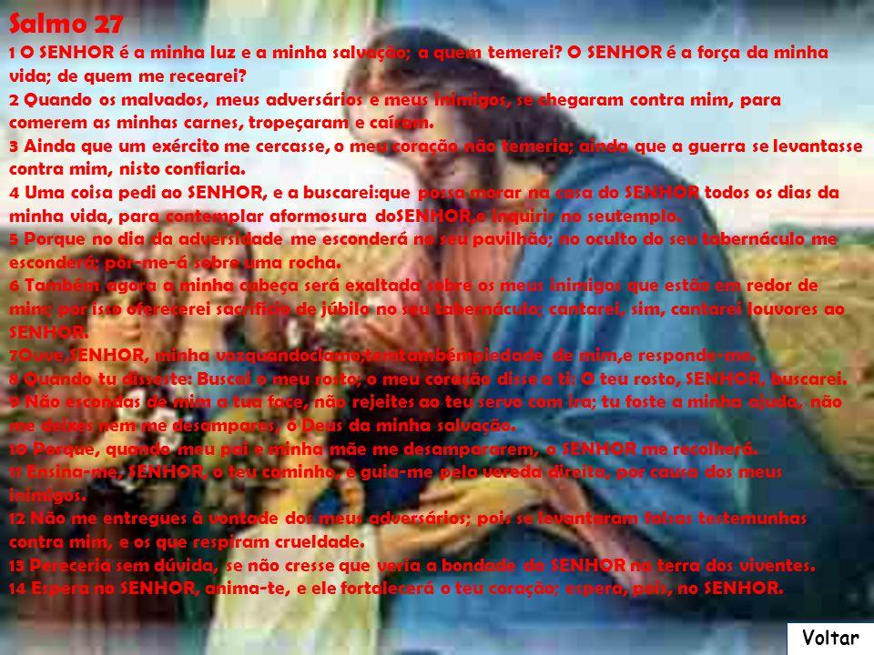 Salmo 27 1 O SENHOR é a minha luz e a minha salvação; a quem temerei O SENHOR é a força da minha vida; de quem me recearei