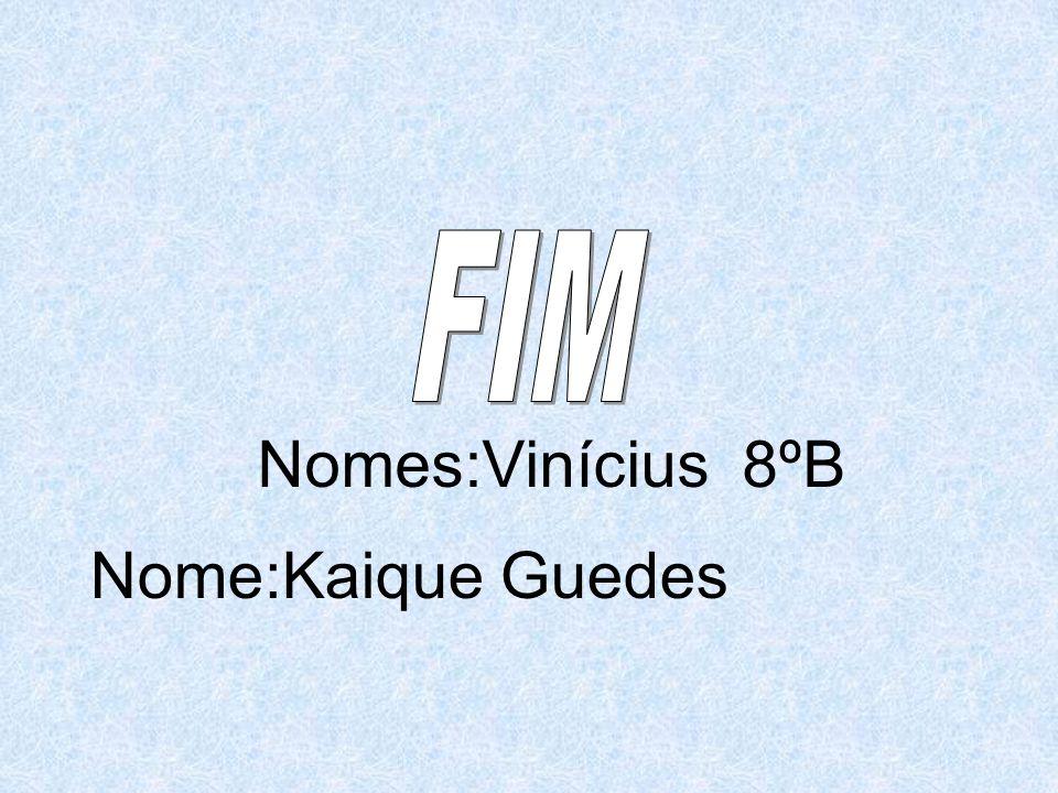 FIM Nomes:Vinícius 8ºB Nome:Kaique Guedes