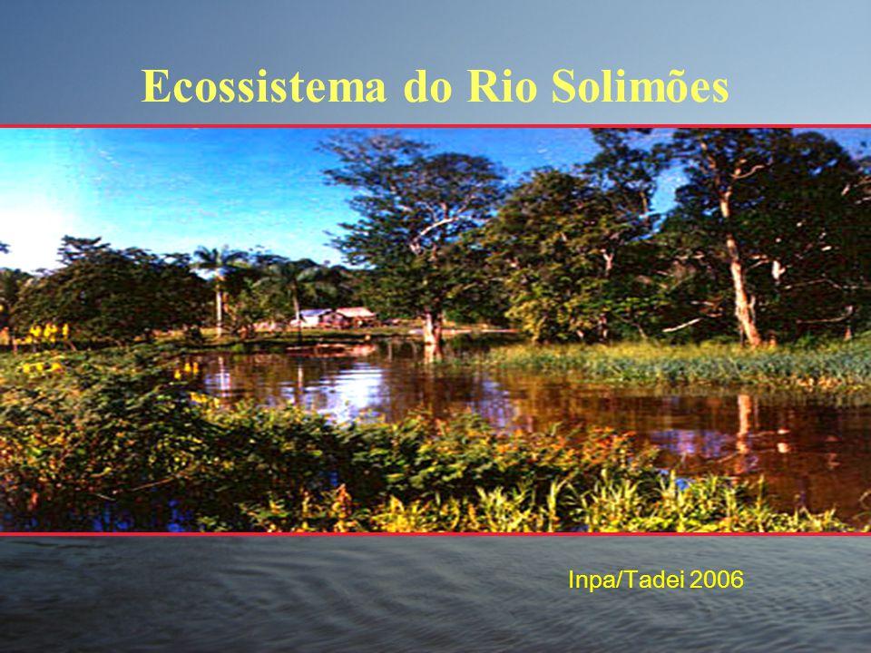 Ecossistema do Rio Solimões