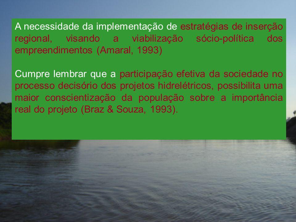 A necessidade da implementação de estratégias de inserção regional, visando a viabilização sócio-política dos empreendimentos (Amaral, 1993)