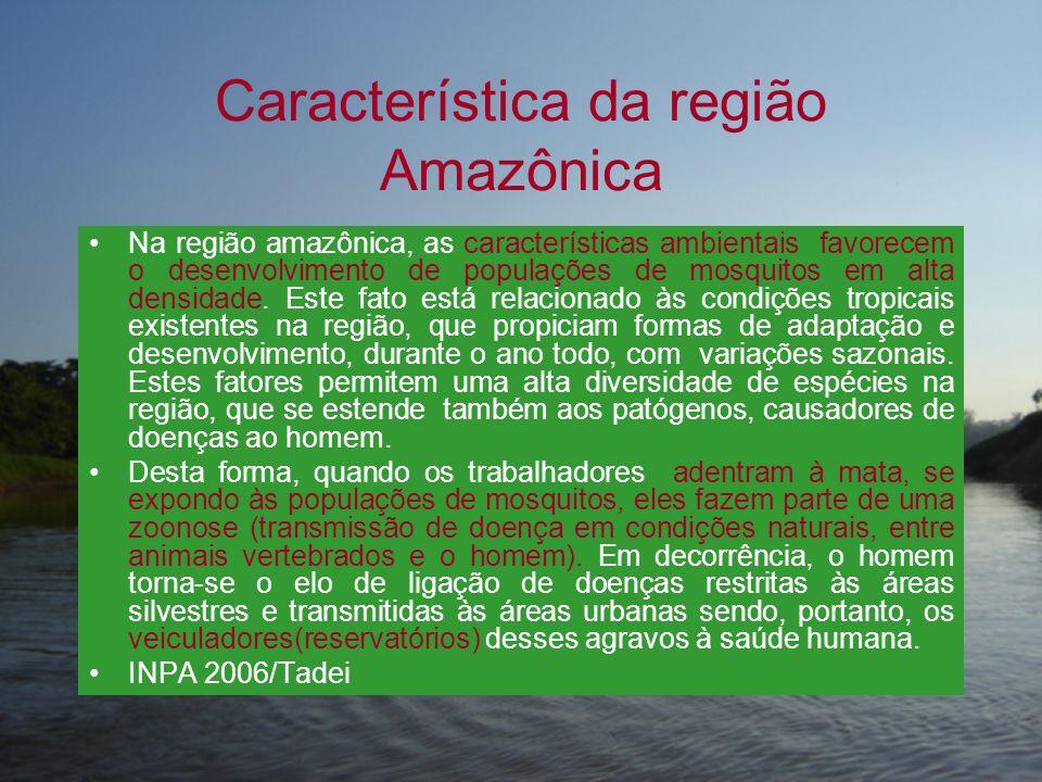 Característica da região Amazônica