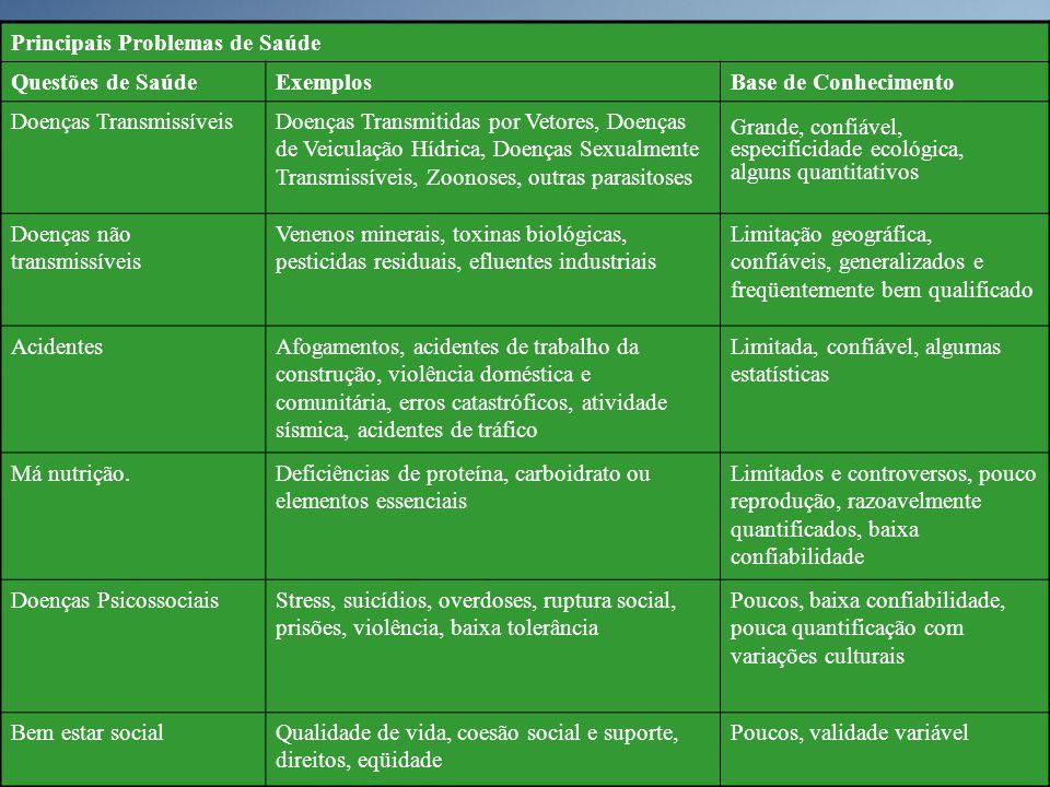 Principais Problemas de Saúde