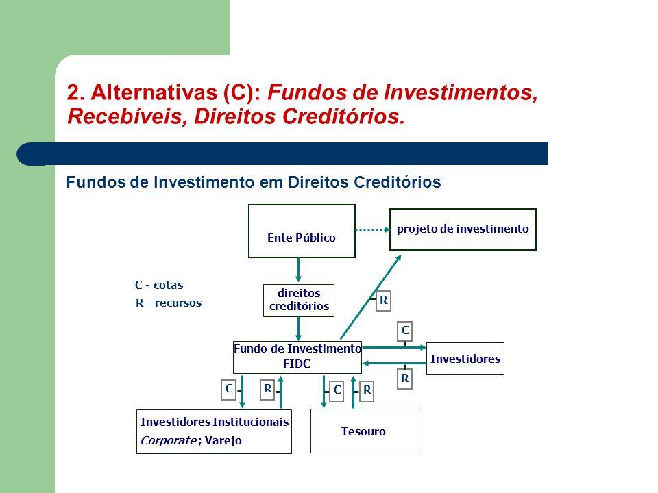 Investidores Institucionais projeto de investimento