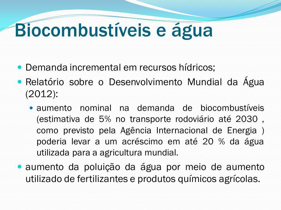 Biocombustíveis e água