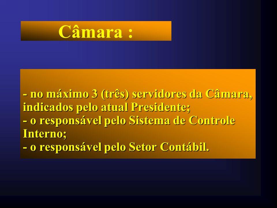 Câmara : - no máximo 3 (três) servidores da Câmara, indicados pelo atual Presidente; - o responsável pelo Sistema de Controle Interno;