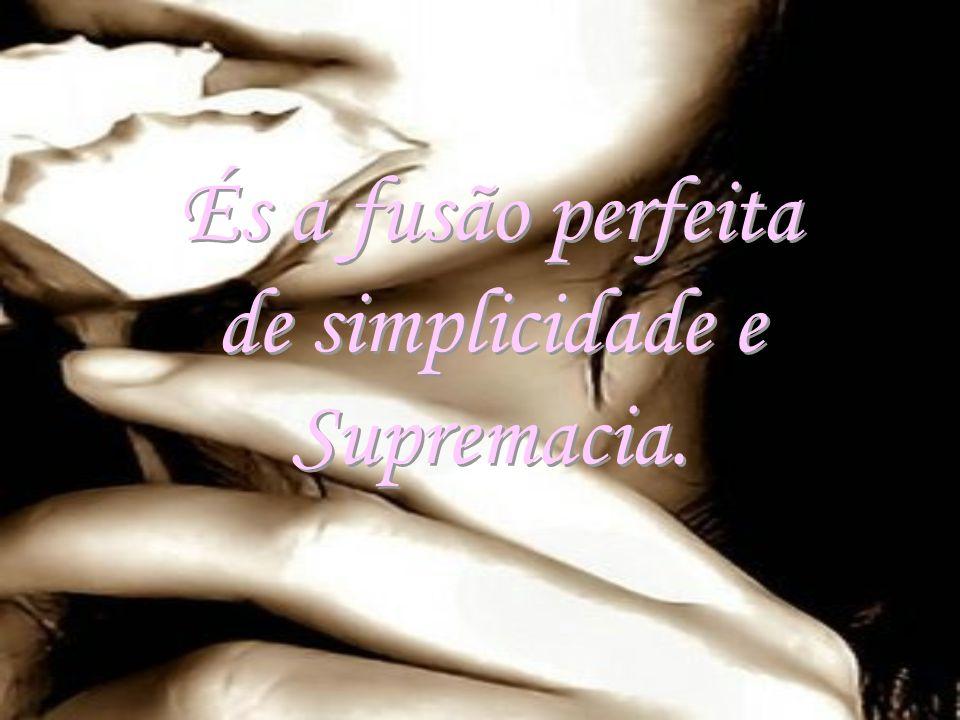 És a fusão perfeita de simplicidade e Supremacia.