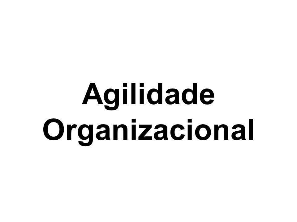 Agilidade Organizacional