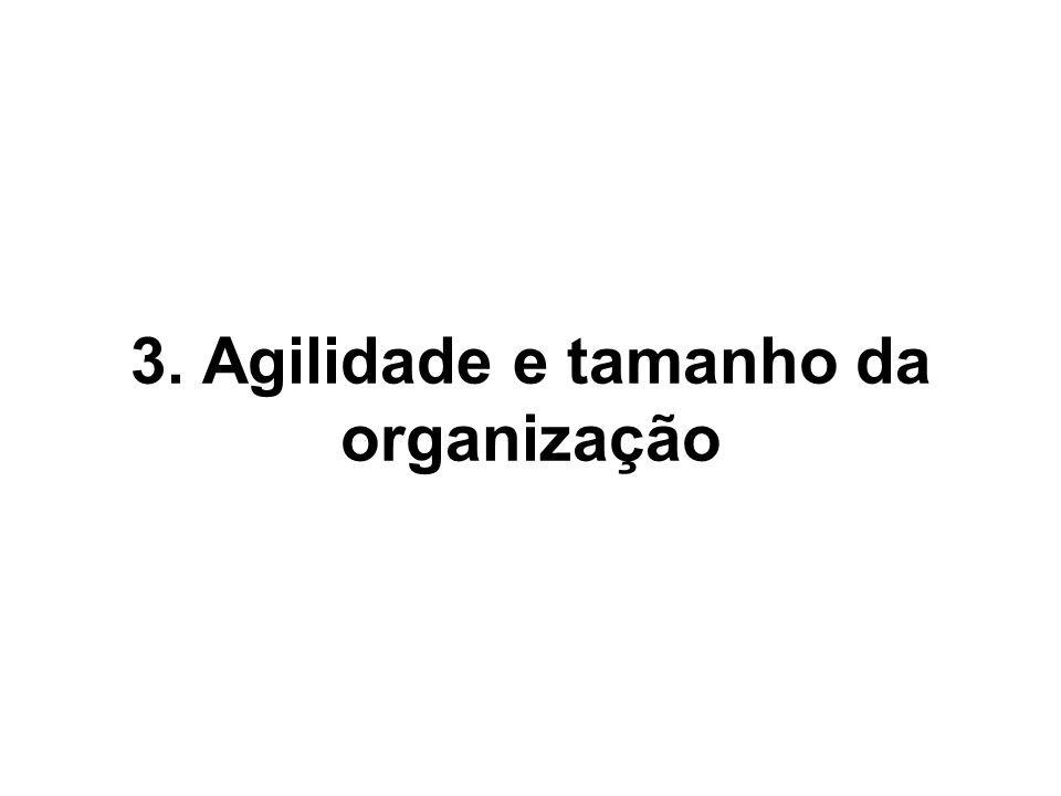 3. Agilidade e tamanho da organização