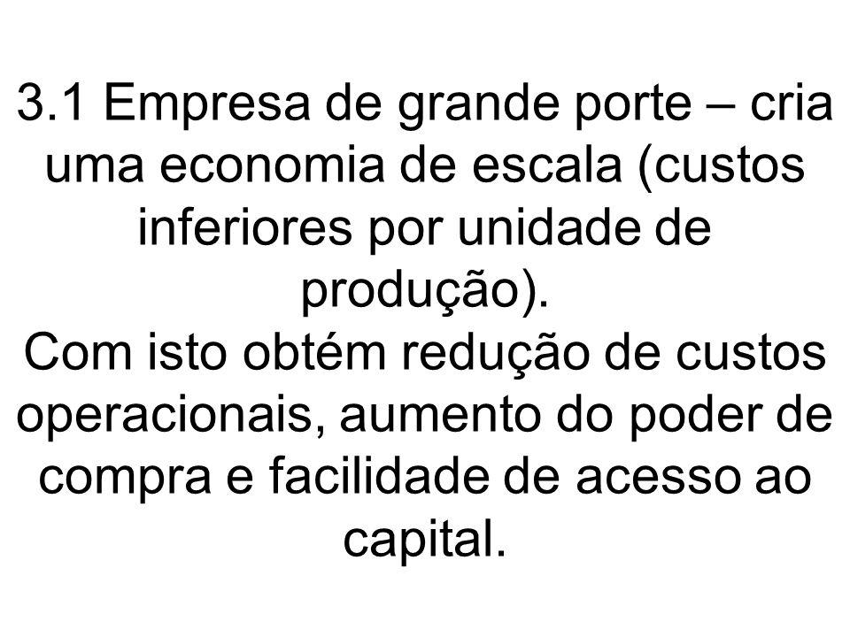 3.1 Empresa de grande porte – cria uma economia de escala (custos inferiores por unidade de produção).