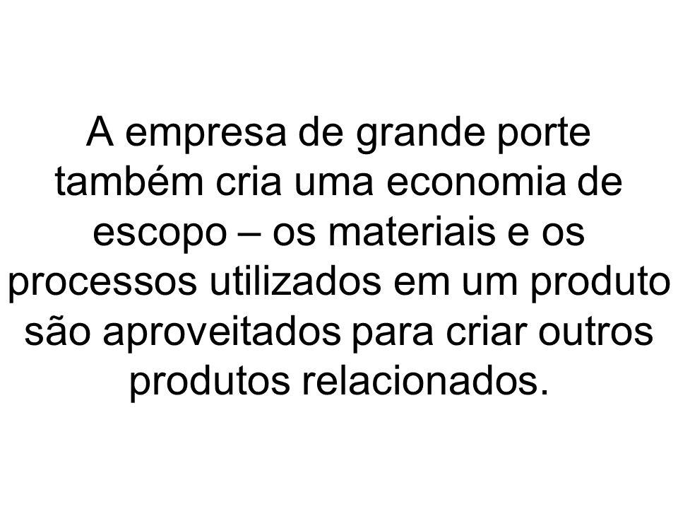 A empresa de grande porte também cria uma economia de escopo – os materiais e os processos utilizados em um produto são aproveitados para criar outros produtos relacionados.
