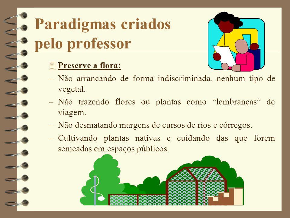 Paradigmas criados pelo professor