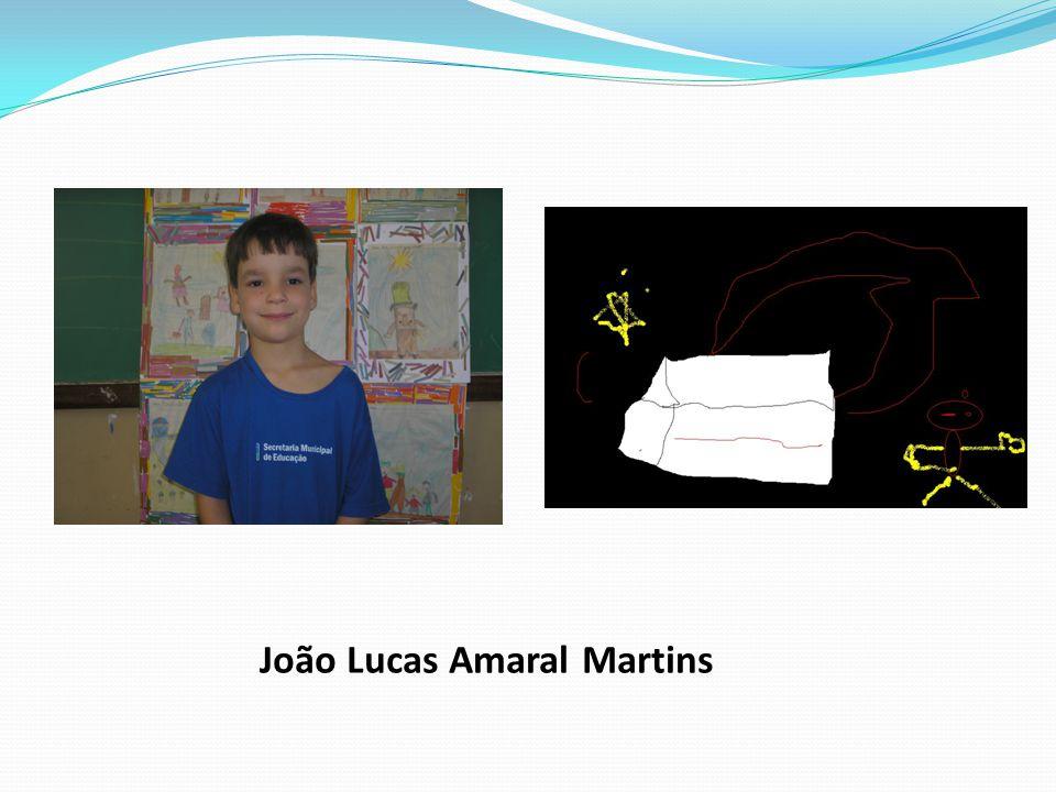 João Lucas Amaral Martins