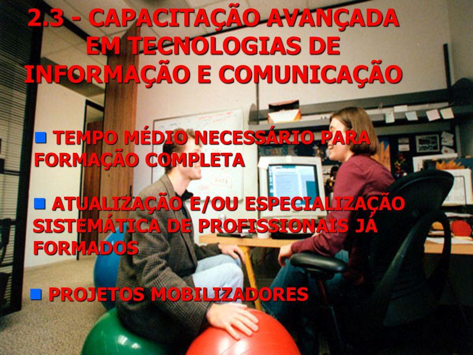 2.3 - CAPACITAÇÃO AVANÇADA EM TECNOLOGIAS DE INFORMAÇÃO E COMUNICAÇÃO