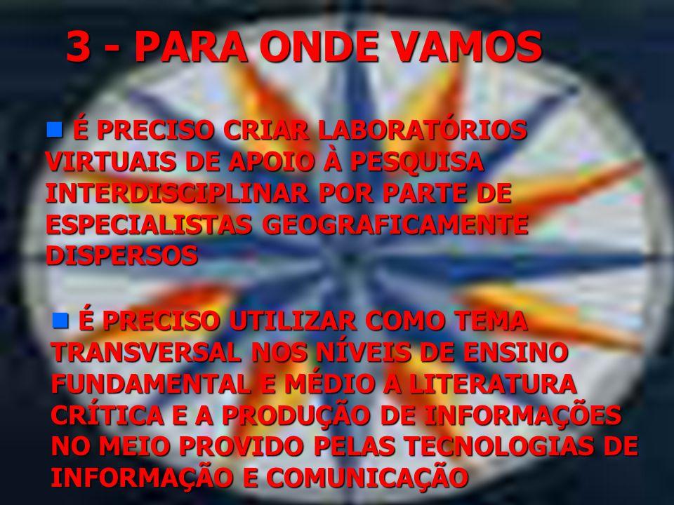 3 - PARA ONDE VAMOS É PRECISO CRIAR LABORATÓRIOS VIRTUAIS DE APOIO À PESQUISA INTERDISCIPLINAR POR PARTE DE ESPECIALISTAS GEOGRAFICAMENTE DISPERSOS.
