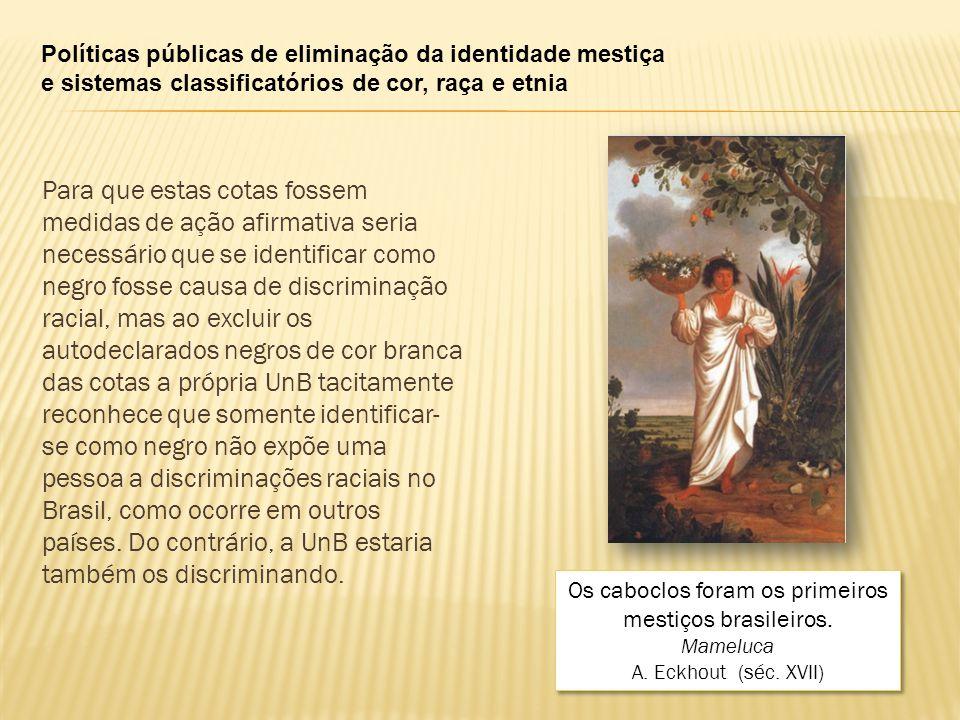 Os caboclos foram os primeiros mestiços brasileiros.