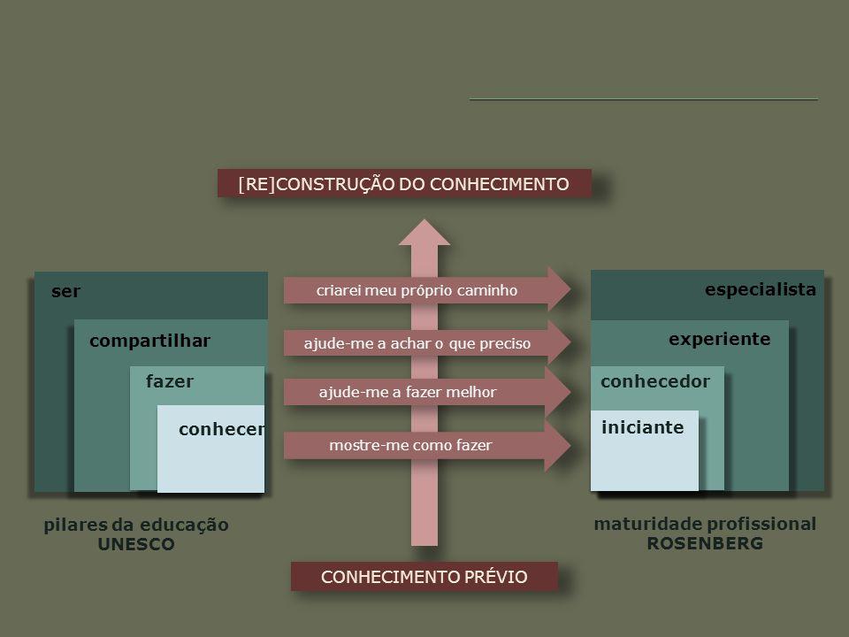 pilares da educação UNESCO maturidade profissional ROSENBERG