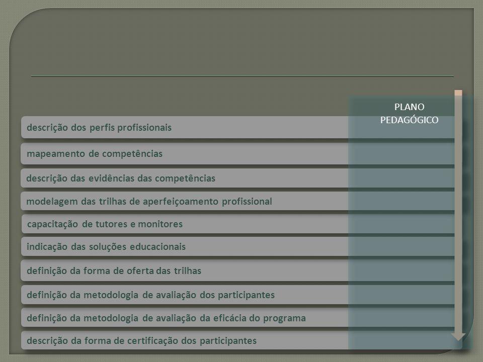 PLANO PEDAGÓGICO descrição dos perfis profissionais. mapeamento de competências. descrição das evidências das competências.