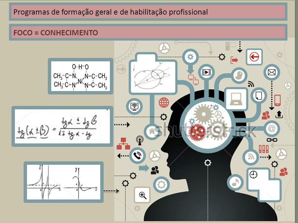 Programas de formação geral e de habilitação profissional