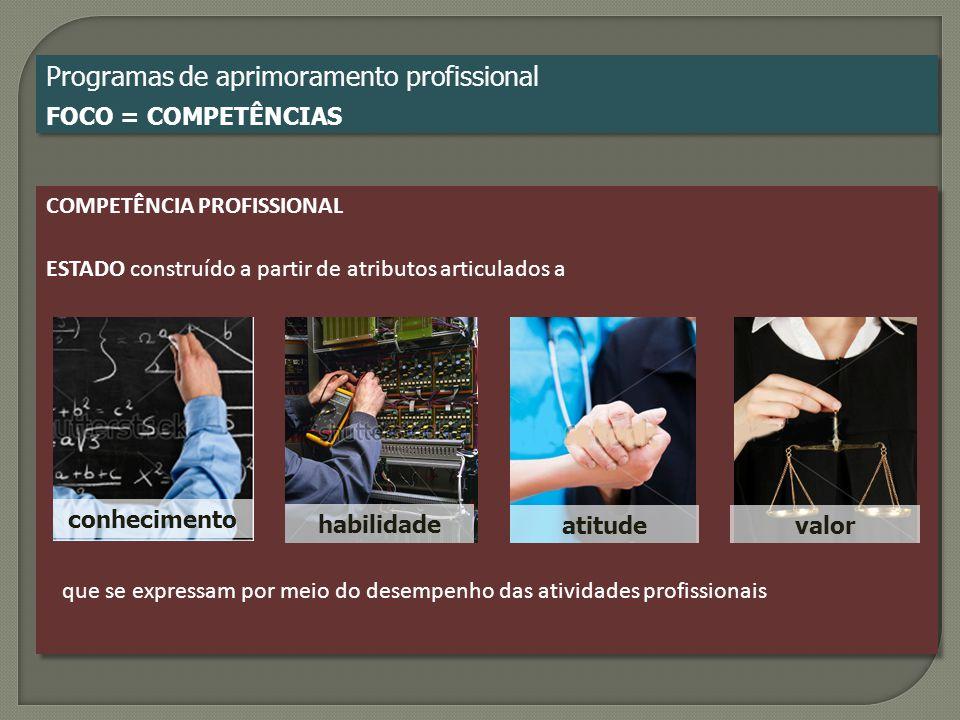 Programas de aprimoramento profissional