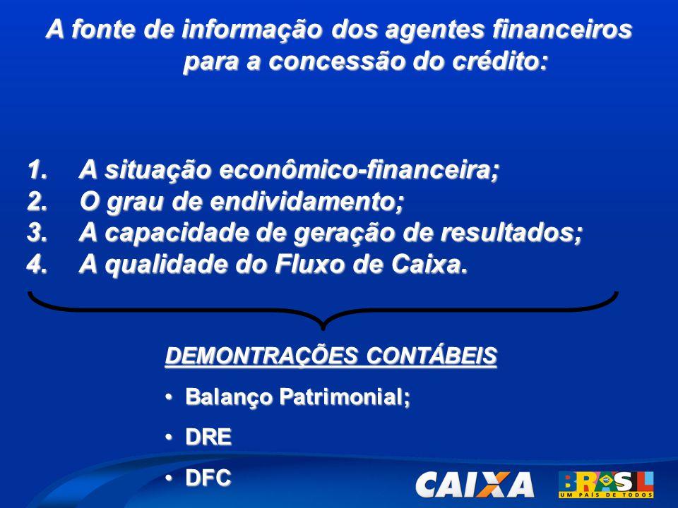 A situação econômico-financeira; O grau de endividamento;