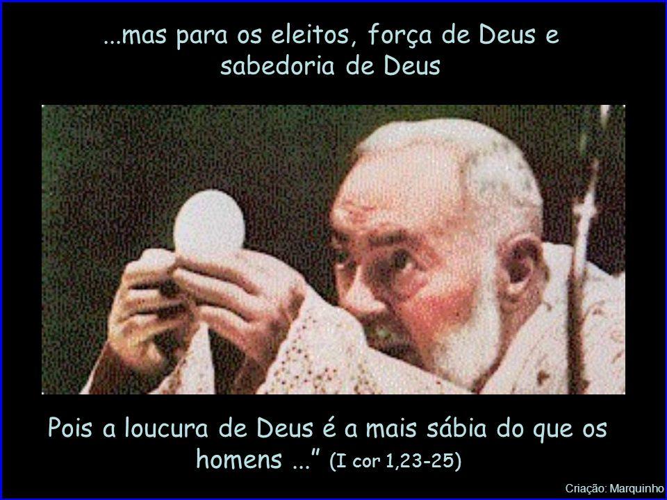 ...mas para os eleitos, força de Deus e sabedoria de Deus