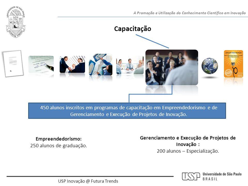 Gerenciamento e Execução de Projetos de Inovação :