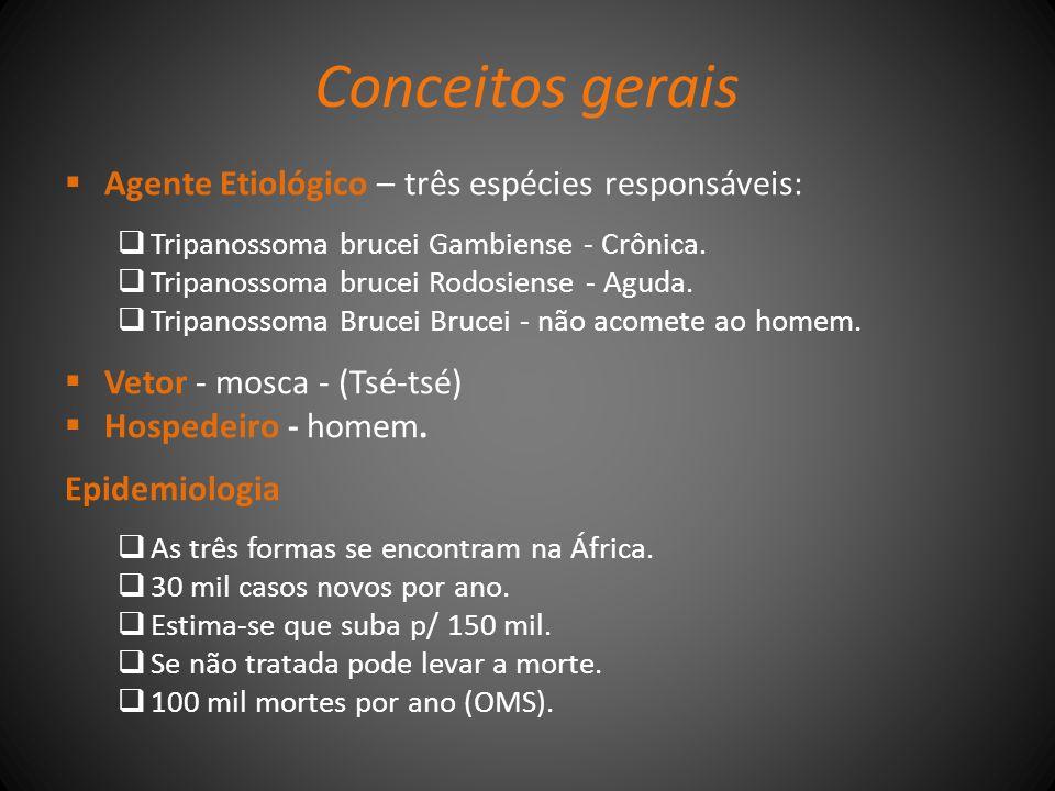 Conceitos gerais Agente Etiológico – três espécies responsáveis: