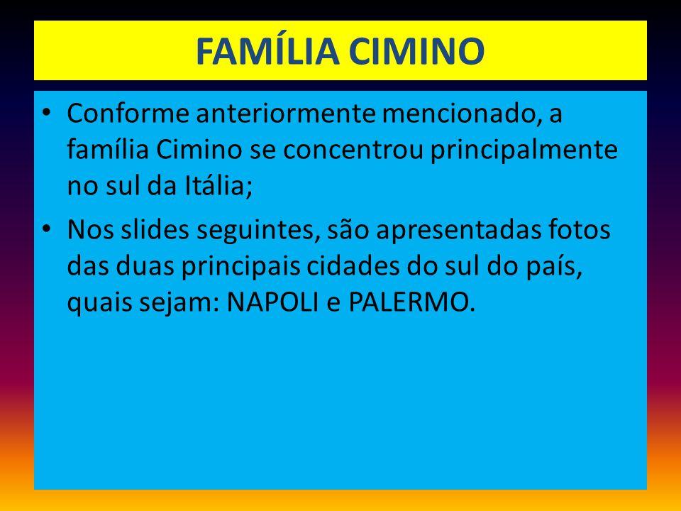 FAMÍLIA CIMINO Conforme anteriormente mencionado, a família Cimino se concentrou principalmente no sul da Itália;