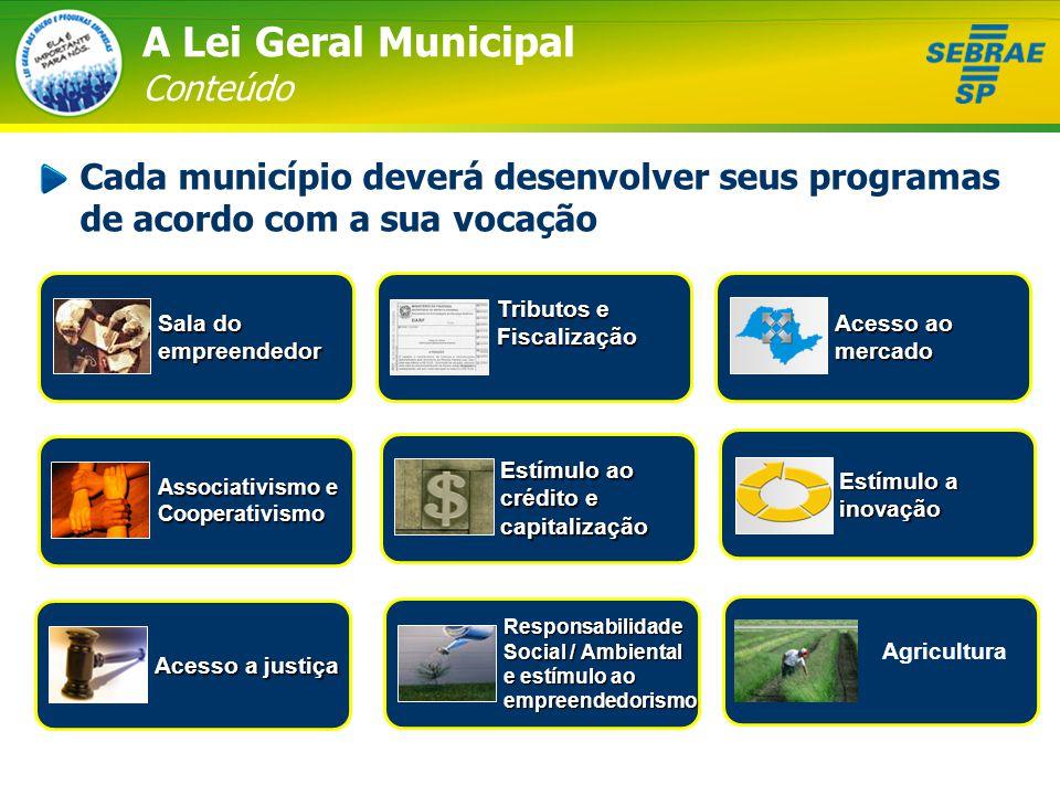 A Lei Geral Municipal Conteúdo