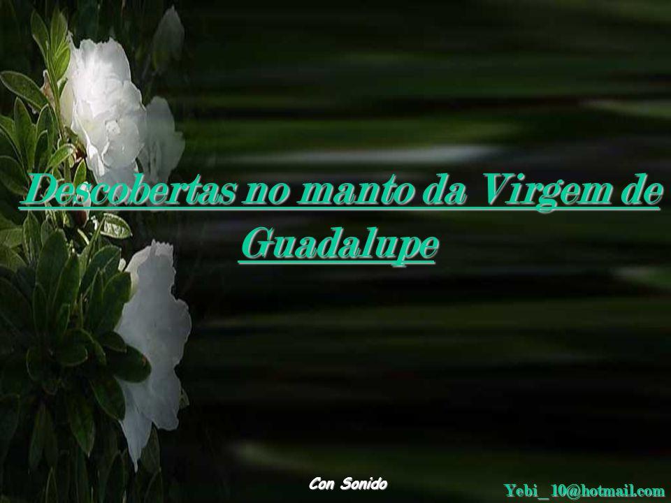 Descobertas no manto da Virgem de Guadalupe