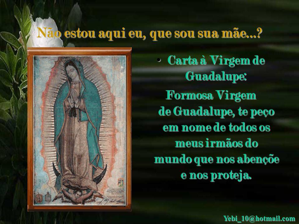 Não estou aqui eu, que sou sua mãe... Carta à Virgem de Guadalupe: