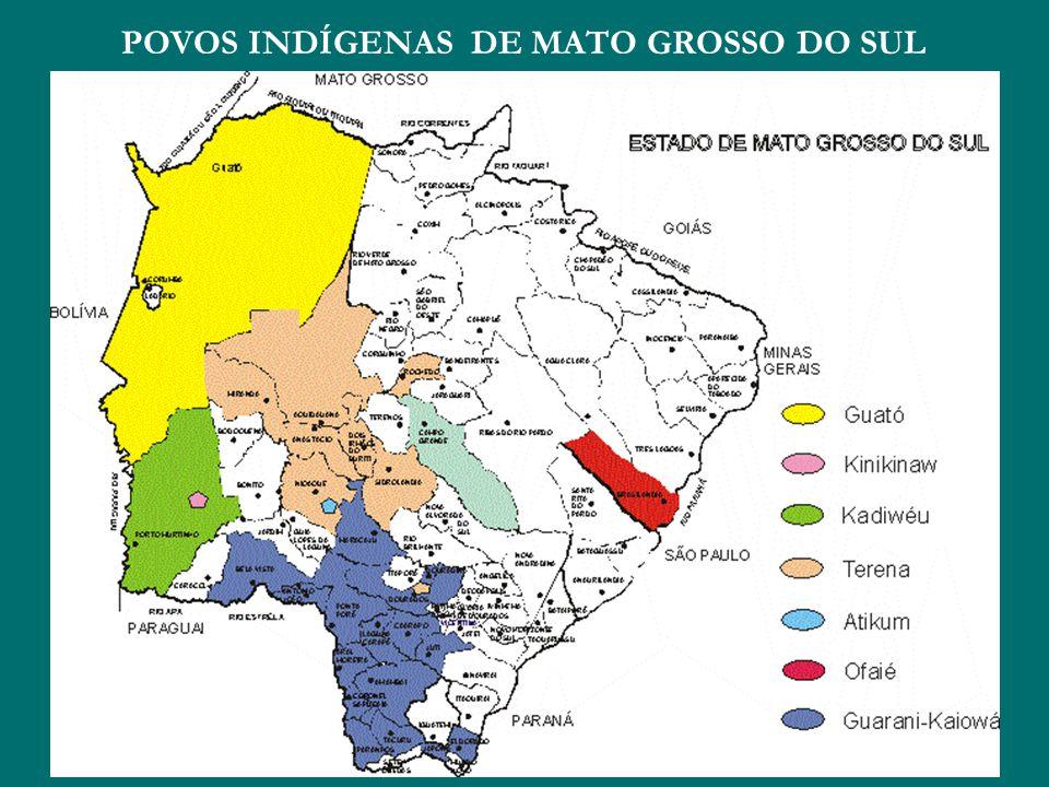 POVOS INDÍGENAS DE MATO GROSSO DO SUL