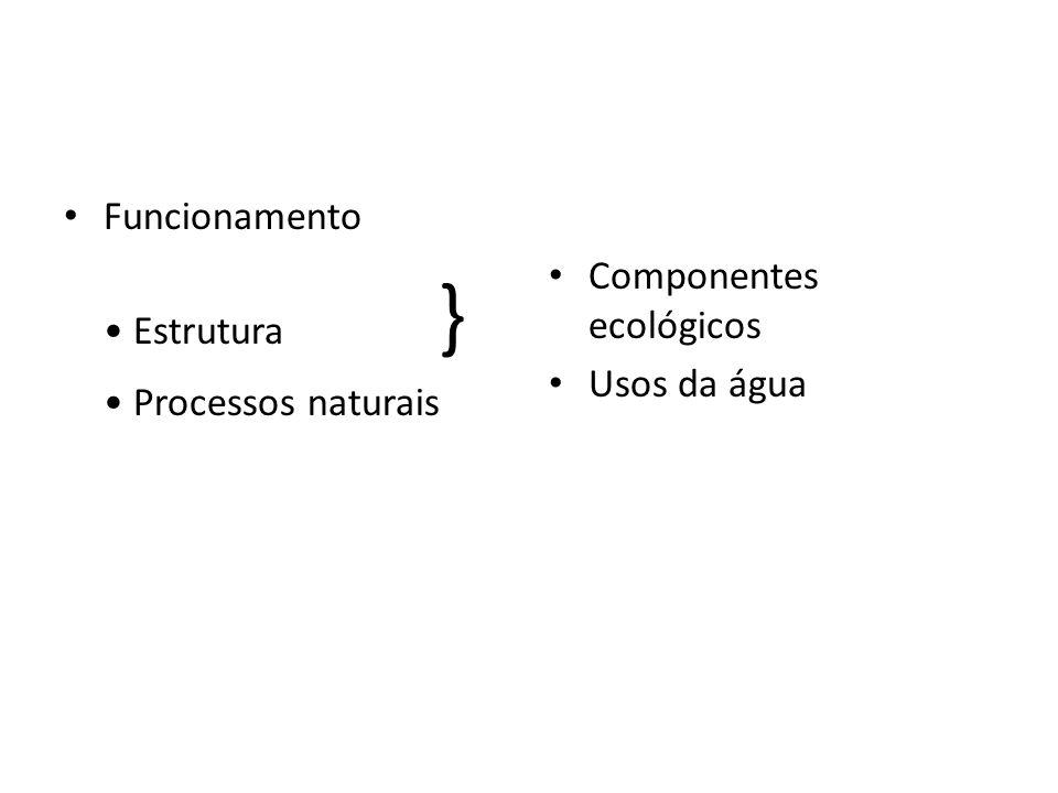 Funcionamento • Estrutura } • Processos naturais Componentes ecológicos Usos da água