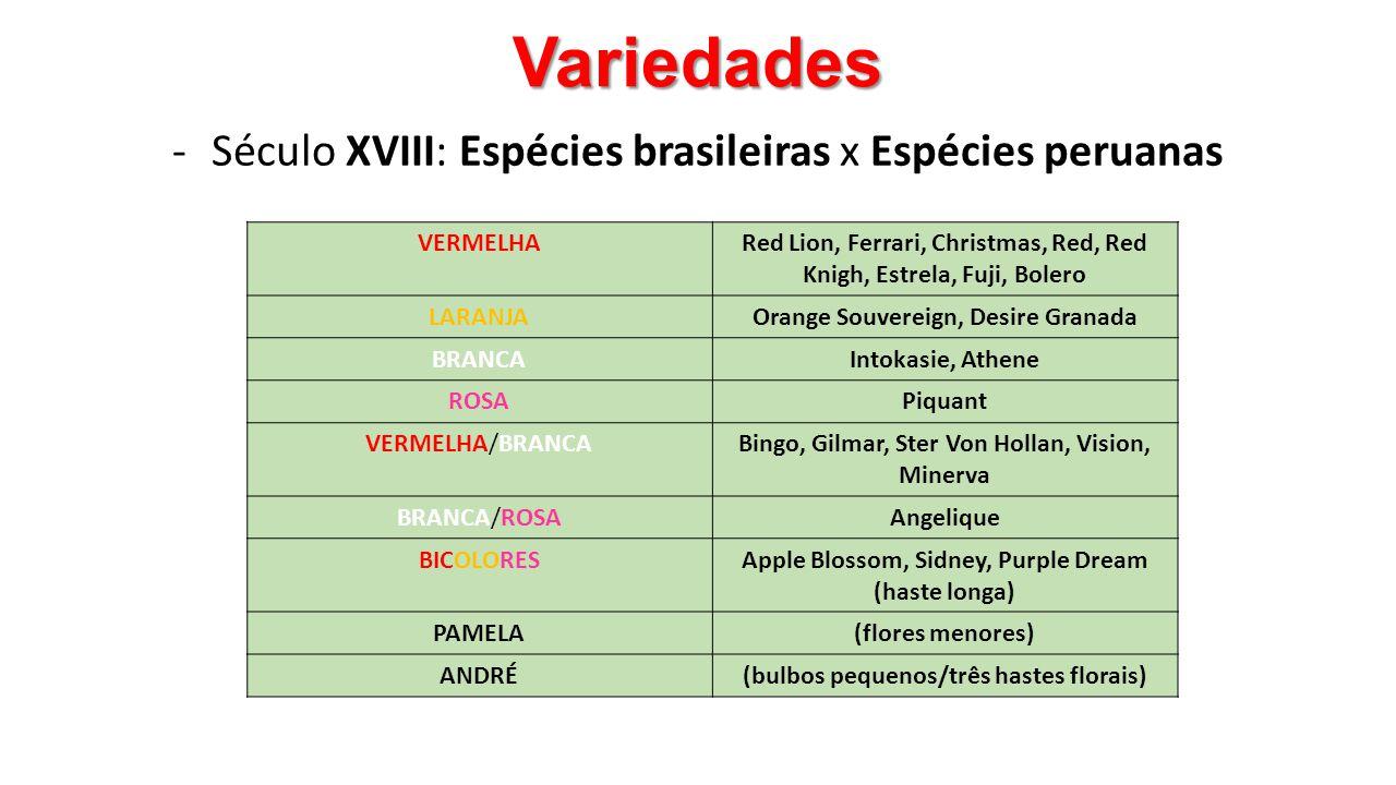 Século XVIII: Espécies brasileiras x Espécies peruanas