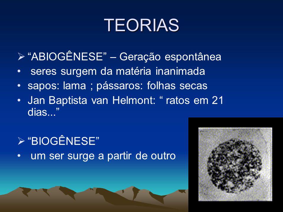 TEORIAS ABIOGÊNESE – Geração espontânea