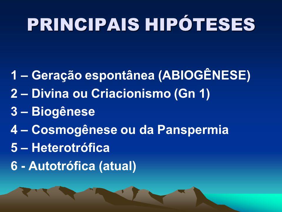 PRINCIPAIS HIPÓTESES 1 – Geração espontânea (ABIOGÊNESE)