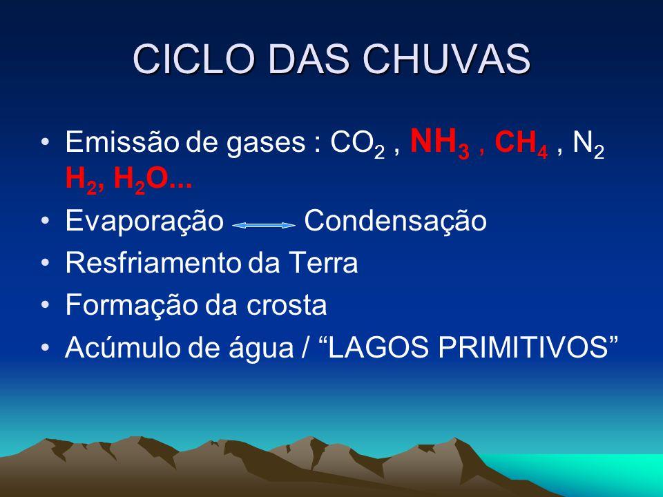 CICLO DAS CHUVAS Emissão de gases : CO2 , NH3 , CH4 , N2 H2, H2O...
