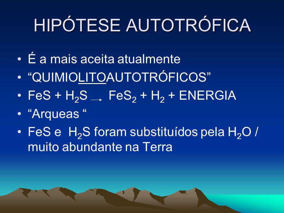 HIPÓTESE AUTOTRÓFICA É a mais aceita atualmente