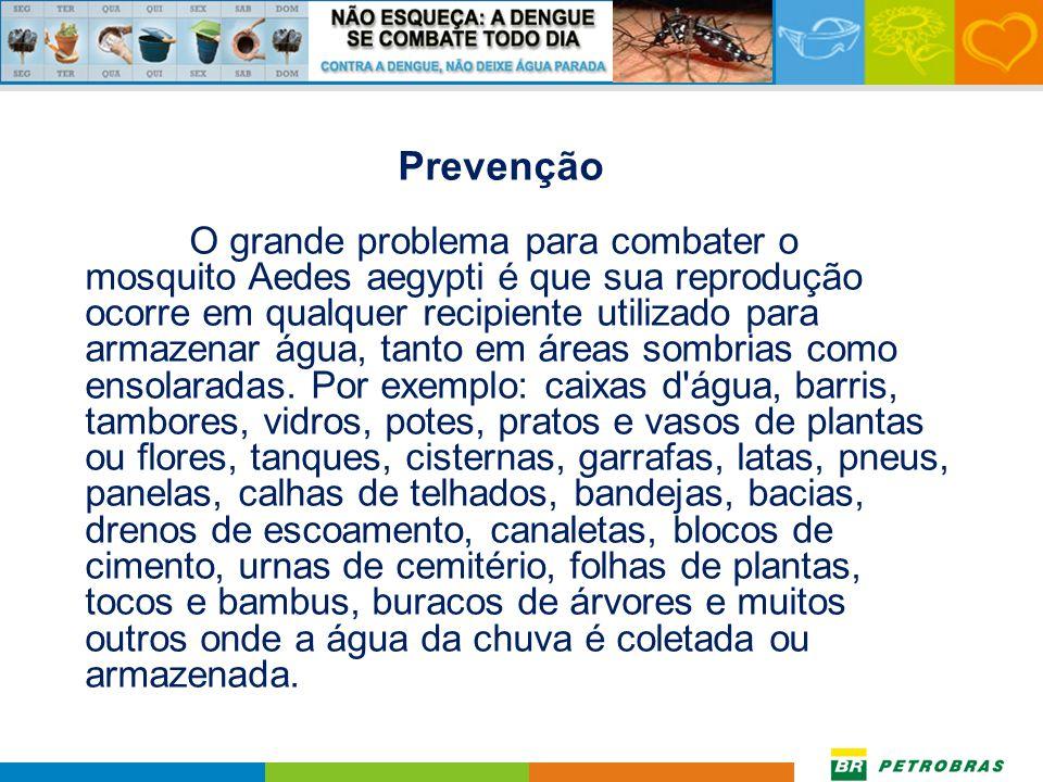 Prevenção O grande problema para combater o mosquito Aedes aegypti é que sua reprodução ocorre em qualquer recipiente utilizado para armazenar água, tanto em áreas sombrias como ensolaradas.