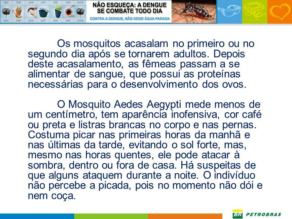 Os mosquitos acasalam no primeiro ou no segundo dia após se tornarem adultos.