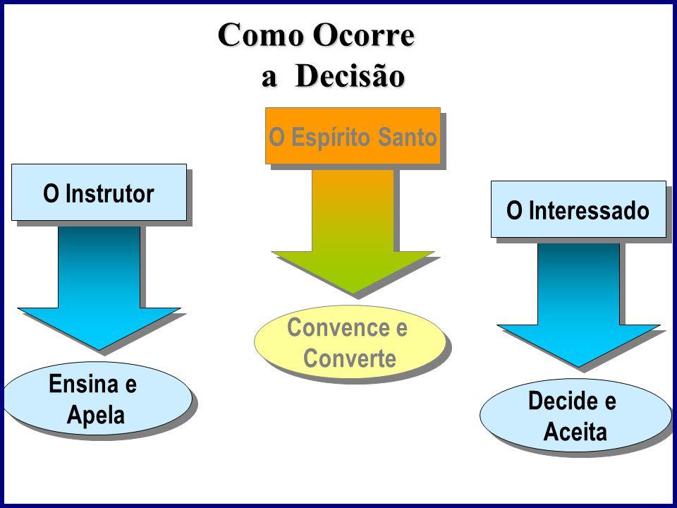 Como Ocorre a Decisão O Espírito Santo O Instrutor O Interessado