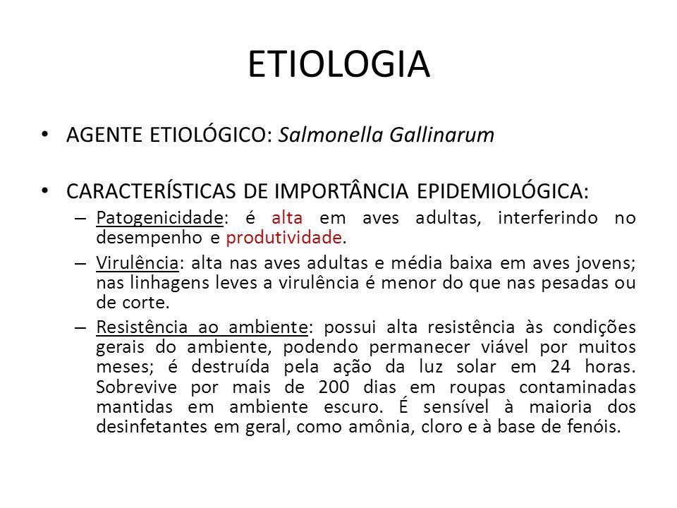 ETIOLOGIA AGENTE ETIOLÓGICO: Salmonella Gallinarum