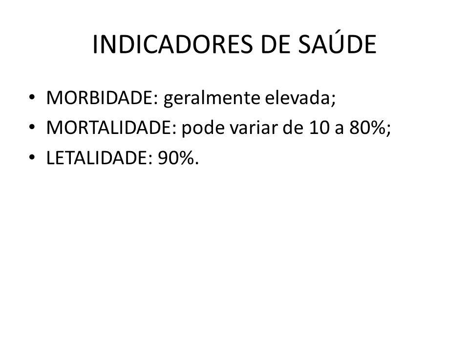 INDICADORES DE SAÚDE MORBIDADE: geralmente elevada;