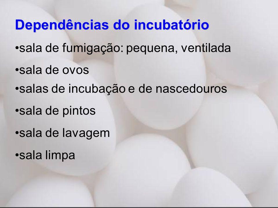 Dependências do incubatório