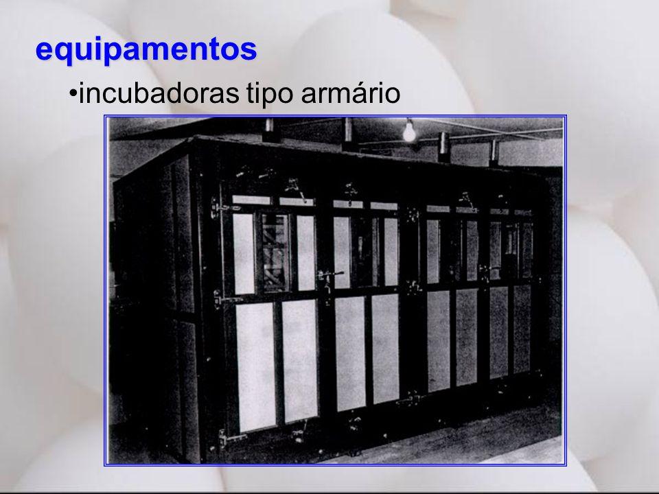 equipamentos incubadoras tipo armário
